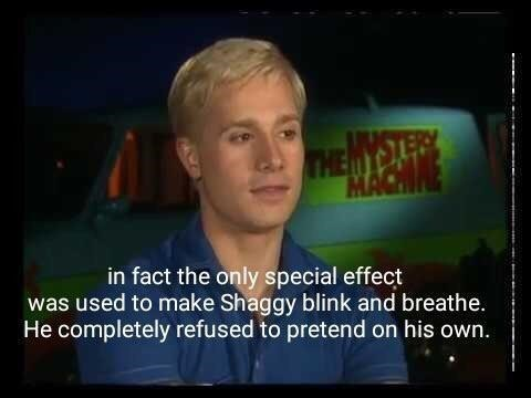 shaggy meme - Forehead - THEM MAC in fact the only special effect was used to make Shaggy blink and breathe. He completely refused to pretend on his own