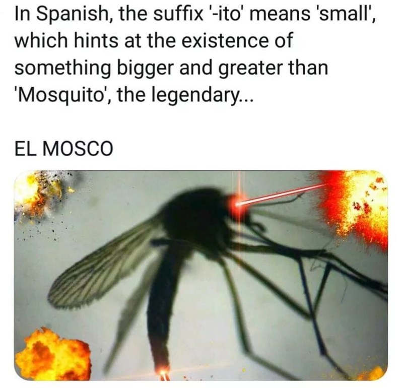 meme - Organism - In Spanish, the suffix '-ito' means 'small', which hints at the existence of something bigger and greater than 'Mosquito', the legendary... EL MOSCO