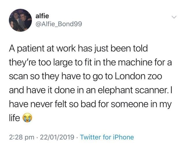 Text - alfie @Alfie_Bond99 A patient at work has just been told they're too large to fit in the machine for a scan so they have to go to London zoo and have it done in an elephant scanner. I have never felt so bad for someone in my life 2:28 pm 22/01/2019 Twitter for iPhone