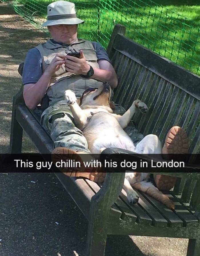 Sitting - This guy chillin with his dog in London
