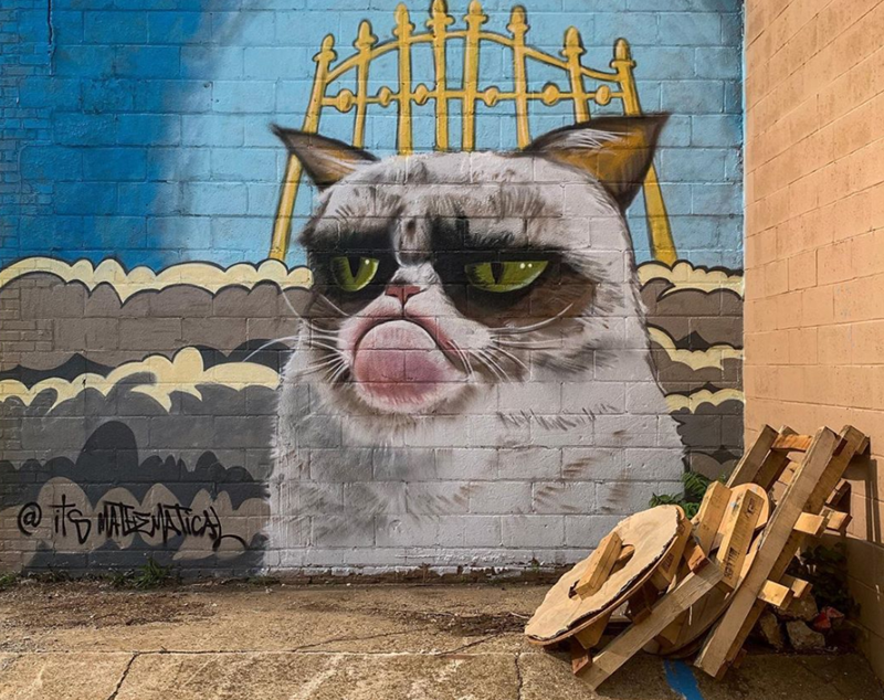 Grumpy cat graffiti