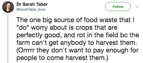 twitter post The one big source of food waste that I *do worry about is crops that are perfectly good, and rot in the field bc the farm can't get anybody to harvest them. (Orrrrr they don't want to pay enough for people to come harvest them.)