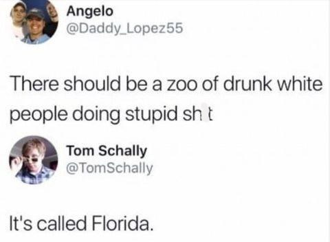 Face - Angelo @Daddy Lopez55 There should be a zoo of drunk white people doing stupid sh t Tom Schally @TomSchally It's called Florida.
