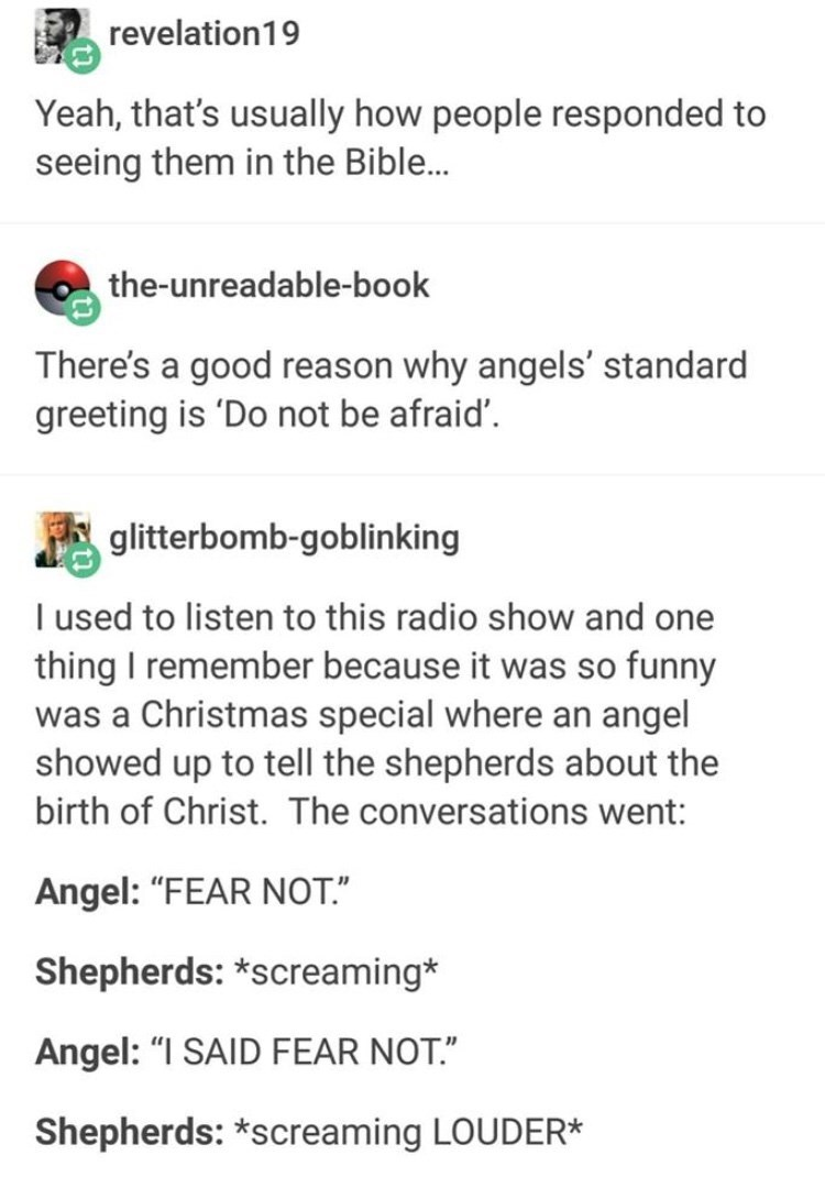 "Text - revelation19 Yeah, that's usually how people responded to seeing them in the Bible... the-unreadable-book There's a good reason why angels' standard greeting is 'Do not be afraid'. glitterbomb-goblinking I used to listen to this radio show and one thing I remember because it was so funny was a Christmas special where an angel showed up to tell the shepherds about the birth of Christ. The conversations went: Angel: ""FEAR NOT."" Shepherds: *screaming* Angel: ""I SAID FEAR NOT."" Shepherds: *sc"