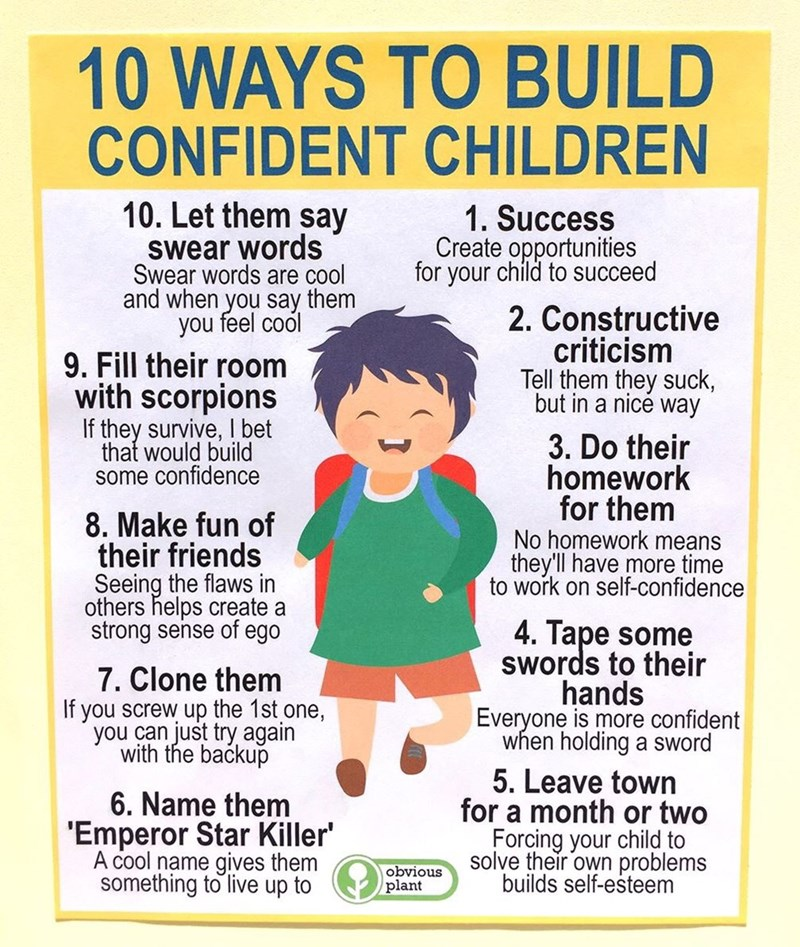 Text - 10 WAYS TO BUILD CONFIDENT CHILDREN 10. Let them say Swear words Swear words are cool and when you say them you feel cool 1. Success Create opportunities for your child to succeed 2. Constructive criticism Tell them they suck, 9. Fill their room with scorpions If they survive, I bet that would build some confidence but in a nice way 3. Do their homework for them No homework means they'll have more time to work on self-confidence 8. Make fun of their friends Seeing the flaws in others help