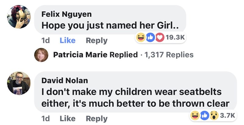 memes - Text - Felix Nguyen Hope you just named her Girl. 19.3K Like 1d Reply Patricia Marie Replied 1,317 Replies David Nolan I don't make my children wear seatbelts either, it's much better to be thrown clear 3.7K Like Reply 1d