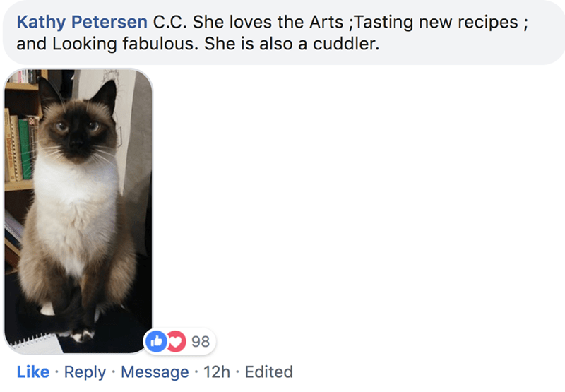 Cat - Kathy Petersen C.C. She loves the Arts ;Tasting new recipes; and Looking fabulous. She is also a cuddler 98 Like Reply Message 12h Edited