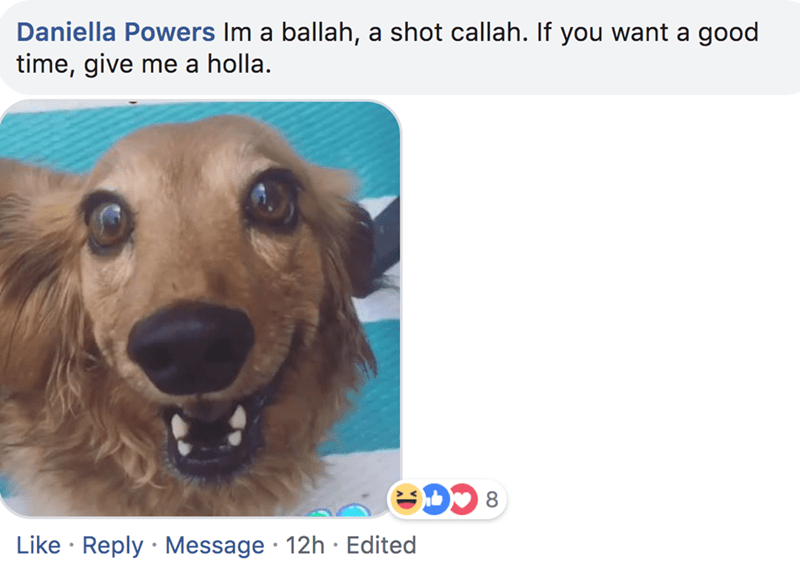 Dog breed - Daniella Powers Im a ballah, a shot callah. If you want a good time, give me a holla. Like Reply Message 12h Edited