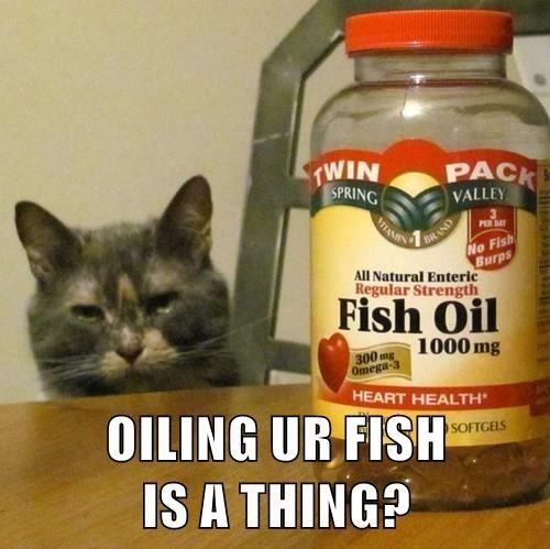 Cat - TWIN PACK SPRING HAM BRAND VALLEY PER SAY No Fish Burps All Natural Enteric Regular Strength Fish Oil 1000 mg 300 mg Omega 3 HEART HEALTH OILING UR FISH IS A THING? SOFTGELS