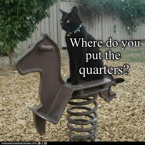 Cat - Where do you put the quarters? ICANHASCHEE2EURGER CoM