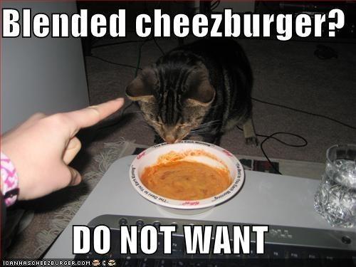 Photo caption - Blended cheezburger? DO NOT WANT ICANHASCHEE2BURGER COM