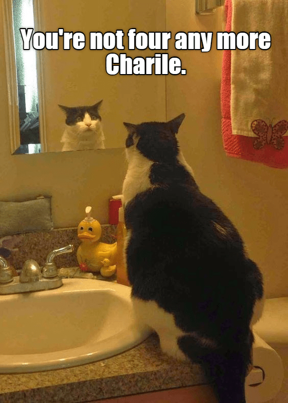 Cat - You're not four any more Charile.