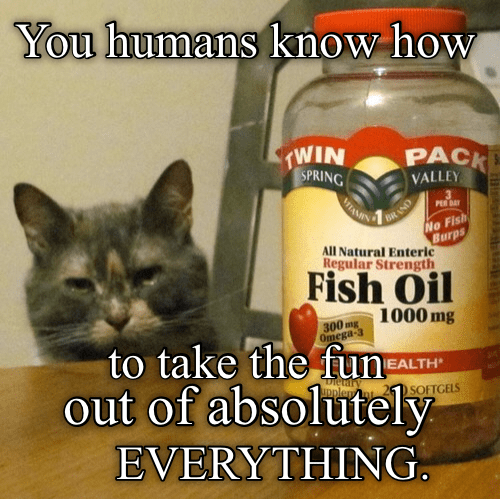 Cat - You humans know how PACK TWIN SPRING MAIN VALLEY PER DAY No Fish Burps All Natural Enteric Regular Strength BRAND Fish Oil 1000 mg 300 mg Omega-3 to take the fun out of absolutely EVERYTHING EALTH pplay SOFTGELS