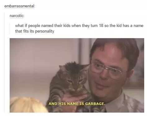 Cat - embarrassmental: narcotic what if people named their kids when they turn 18 so the kid has a name that fits its personality AND HIS NAME ISs GARBAGE.