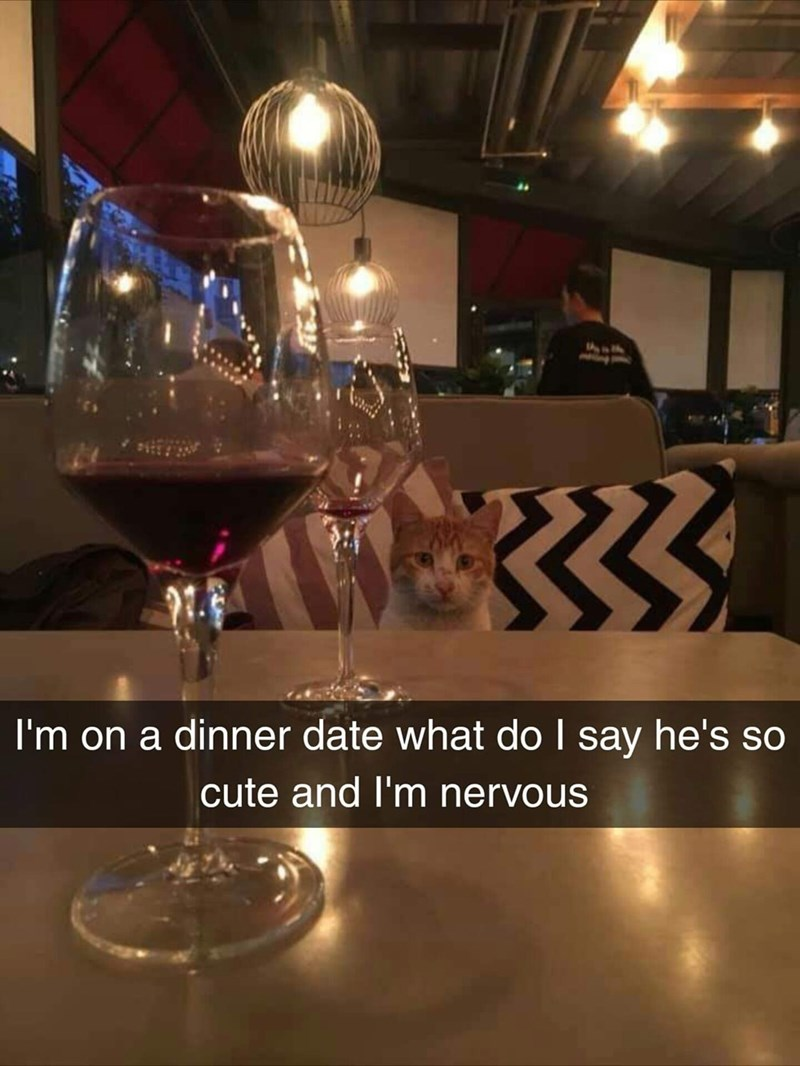 Stemware - I'm on a dinner date what do I say he's so cute and I'm nervous