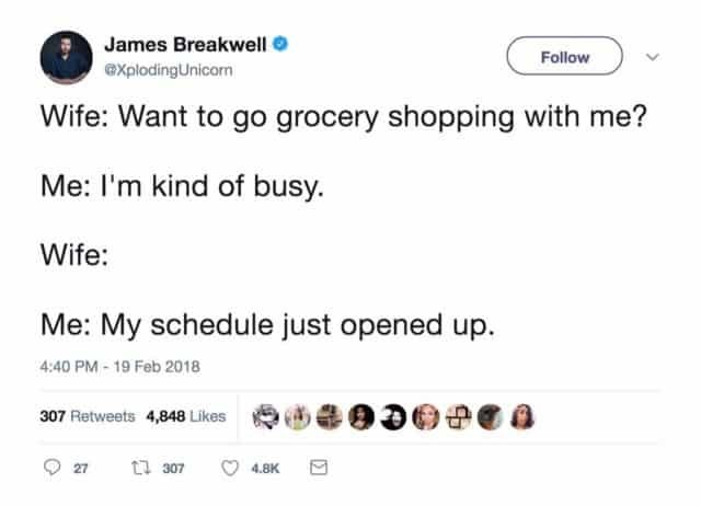 Text - James Breakwell Follow explodingUnicorn Wife: Want to go grocery shopping with me? Me: I'm kind of busy. Wife: Me: My schedule just opened up. 4:40 PM-19 Feb 2018 307 Retweets 4,848 Likes ti 307 27 4.8K