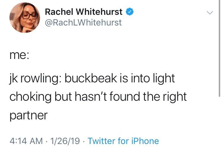 funny tweet jk rowling harry potter me: jk rowling: buckbeak is into light choking but hasn't found the right partner