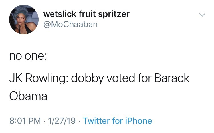 funny tweet jk rowling harry potter no one: JK Rowling: dobby voted for Barack Obama