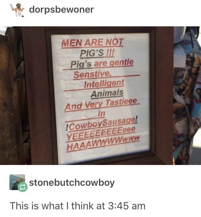 meme - Text - dorpsbewoner MEN ARE NOT PIG'S !!! Pig's are gentle Senstive Intelligent Animals And Very Tastieee in ICowboySausage! YEEEEEEEEEeee HAAAWWWWwww stonebutchcowboy This is what I think at 3:45 am