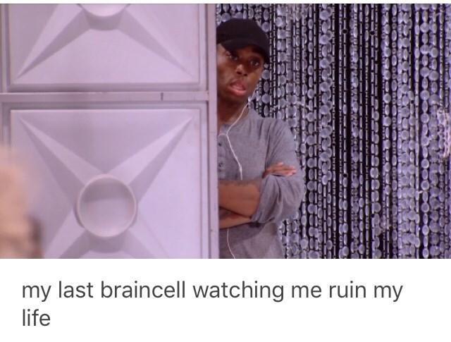 Purple - my last braincell watching me ruin my life