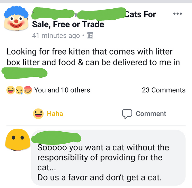 Text - Cats For Sale, Free or Trade 41 minutes ago Looking for free kitten that comes with litter box litter and food & can be delivered to me in You and 10 others 23 Comments Haha Comment Sooooo you want a cat without the responsibility of providing for the cat... Do us a favor and don't get a cat.