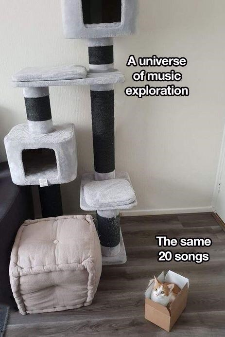 """Object-label meme where a cat condo represents """"A universe of music exploration"""" and a cat in a box next to it represents """"The same 20 songs"""""""