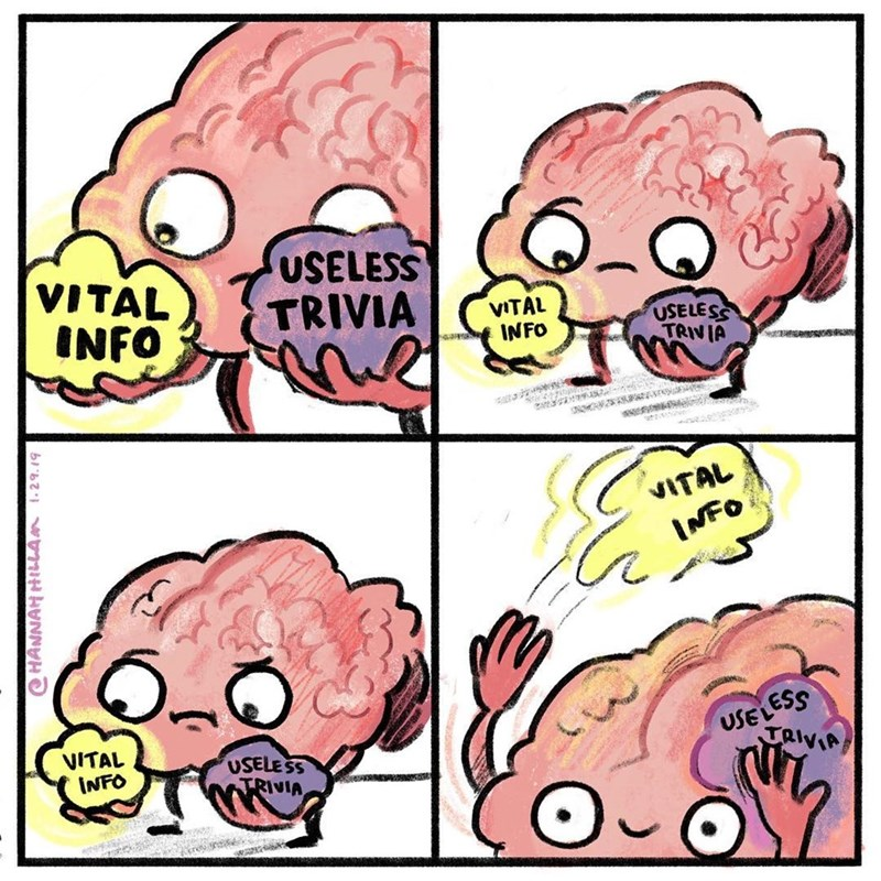 Funny comic about brains storing trivial knowledge.