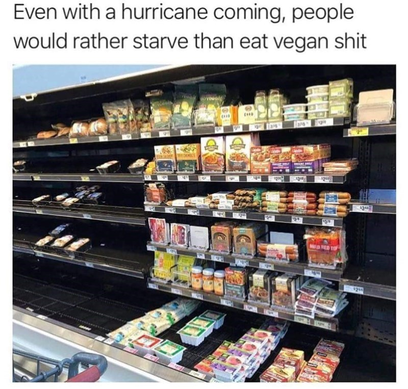 meme - Product - Even with a hurricane coming, people would rather starve than eat vegan shit $23 434 $248 $382 $5 $59 M RED