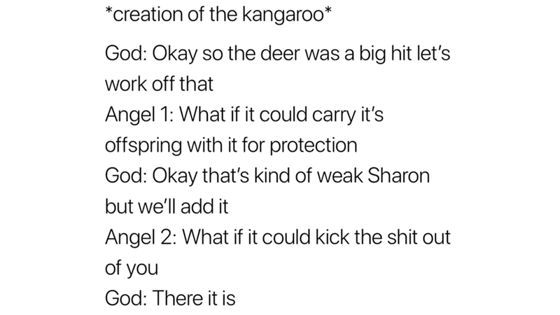 meme - Text - *creation of the kangaroo* God: Okay so the deer was a big hit let's work off that Angel 1: What if it could carry it's offspring with it for protection God: Okay that's kind of weak Sharon but we'll add it Angel 2: What if it could kick the shit out of you God: There it is