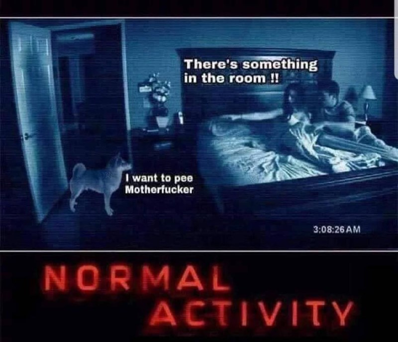 meme - Movie - There's something in the room!! want to pee Motherfucker 3:08:26 AM NORMAL ACTIVITY