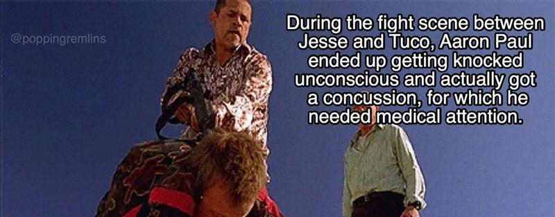 Adaptation - During the fight scene between Jesse and Tuco, Aaron Paul ended up getting knocked unconscious and actually got a concussion, for which he needed medical attention. @poppingremlins