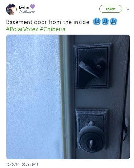 polar vortex meme - Product - Lydia @ydiaxoxo Follow Basement door from the inside #PolarVotex # Chiberia 10:40 AM-30 Jan 2019