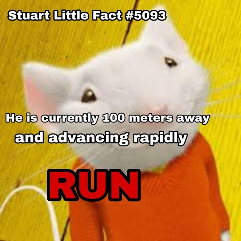 """Pic of Stuart Little with text that reads, """"Stuart Little Fact #5093: He is currently 100 meters away and advancing rapidly. RUN"""""""
