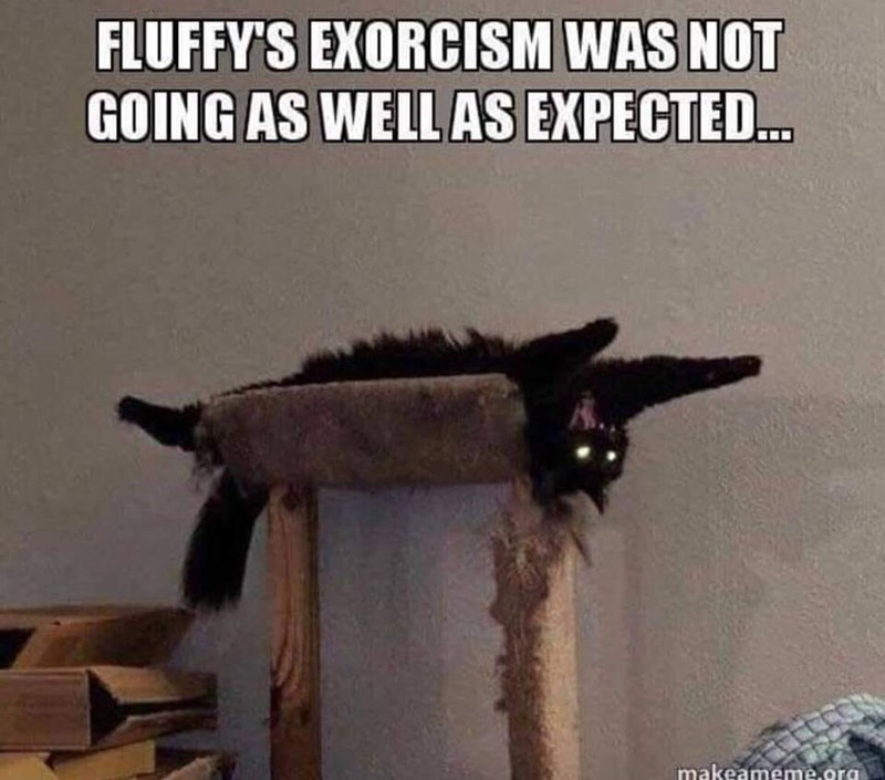 Photo caption - FLUFFY'S EXORCISM WAS NOT GOING AS WELL AS EXPECTE... imakeameme.org