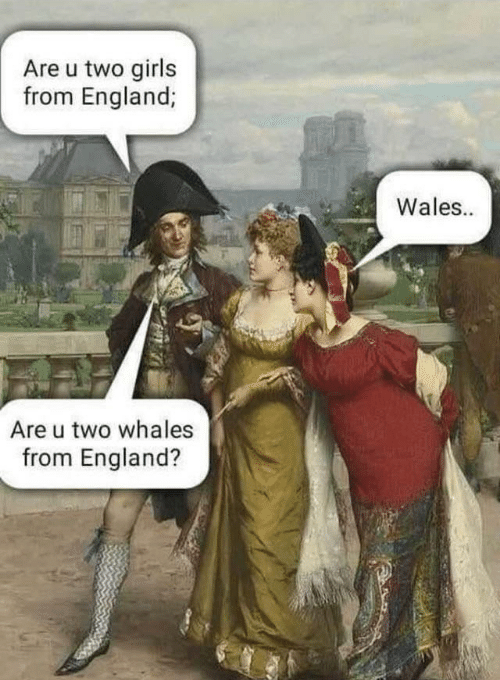 Cartoon - Are u two girls from England; Wales.. Are u two whales from England?