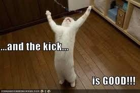 Cat - ...and the kick... is GOOD!!! Ica CHE o.cOM