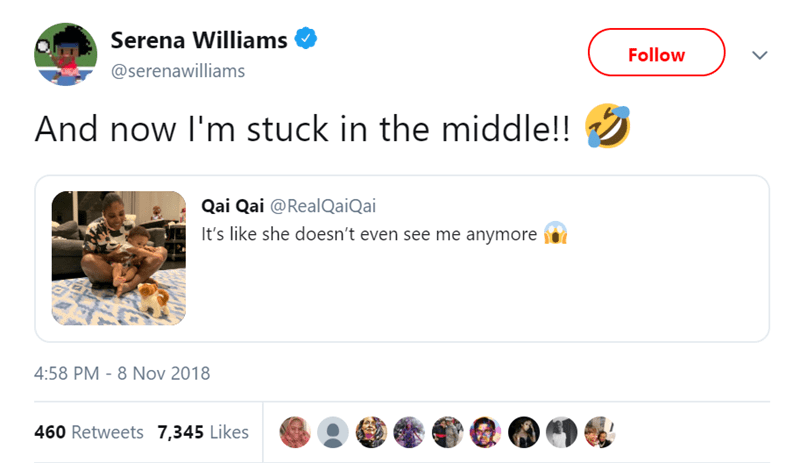 Product - Serena Williams Follow @serenawilliams And now I'm stuck in the middle!! Qai Qai @RealQaiQai It's like she doesn't even see me anymore 4:58 PM - 8 Nov 2018 460 Retweets 7,345 Likes