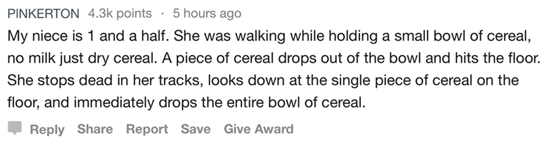 Text - PINKERTON 4.3k points . 5 hours ago My niece is 1 and a half. She was walking while holding a small bowl of cereal, no milk just dry cereal. A piece of cereal drops out of the bowl and hits the floor. She stops dead in her tracks, looks down at the single piece of cereal on the floor, and immediately drops the entire bowl of cereal. Reply Share Report Save Give Award