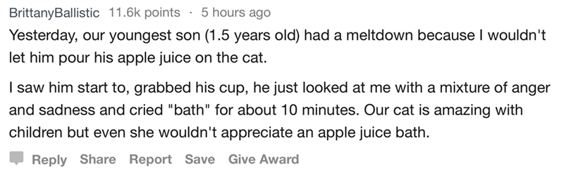 """Text - 5 hours agO BrittanyBallistic 11.6k points Yesterday, our youngest son (1.5 years old) had a meltdown because I wouldn't let him pour his apple juice on the cat. I saw him start to, grabbed his cup, he just looked at me with a mixture of anger and sadness and cried """"bath"""" for about 10 minutes. Our cat is amazing with children but even she wouldn't appreciate apple juice bath. an Reply Share Report Save Give Award"""
