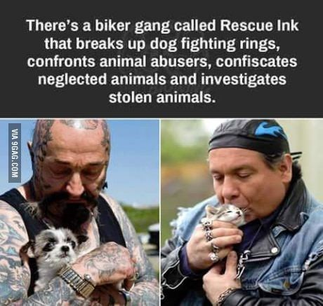 wholesome meme - Human - There's a biker gang called Rescue Ink that breaks up dog fighting rings, confronts animal abusers, confiscates neglected animals and investigates stolen animals. VIA 9GAG.COM