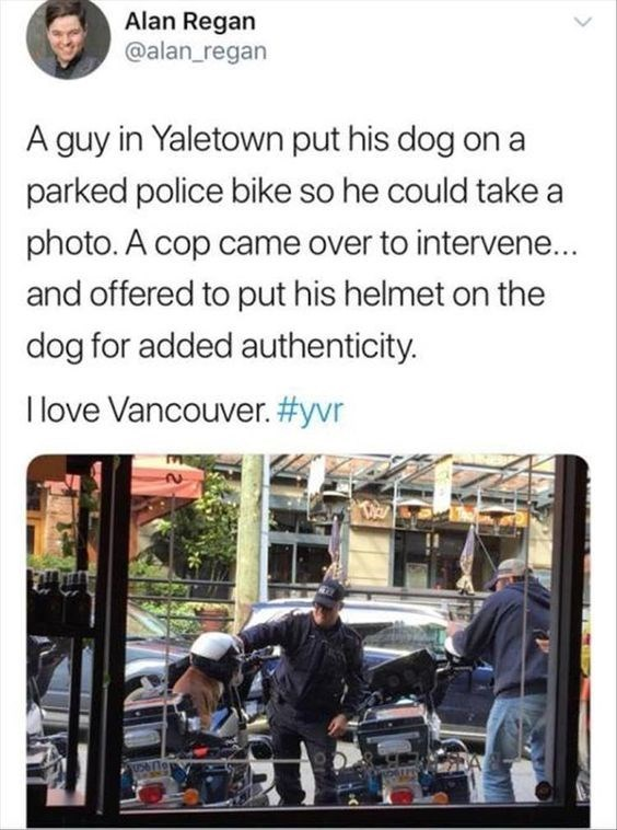wholesome meme - Text - Alan Regan @alan_regan A guy in Yaletown put his dog on a parked police bike so he could take a photo. A cop came over to intervene.. and offered to put his helmet on the dog for added authenticity. I love Vancouver. #yvr