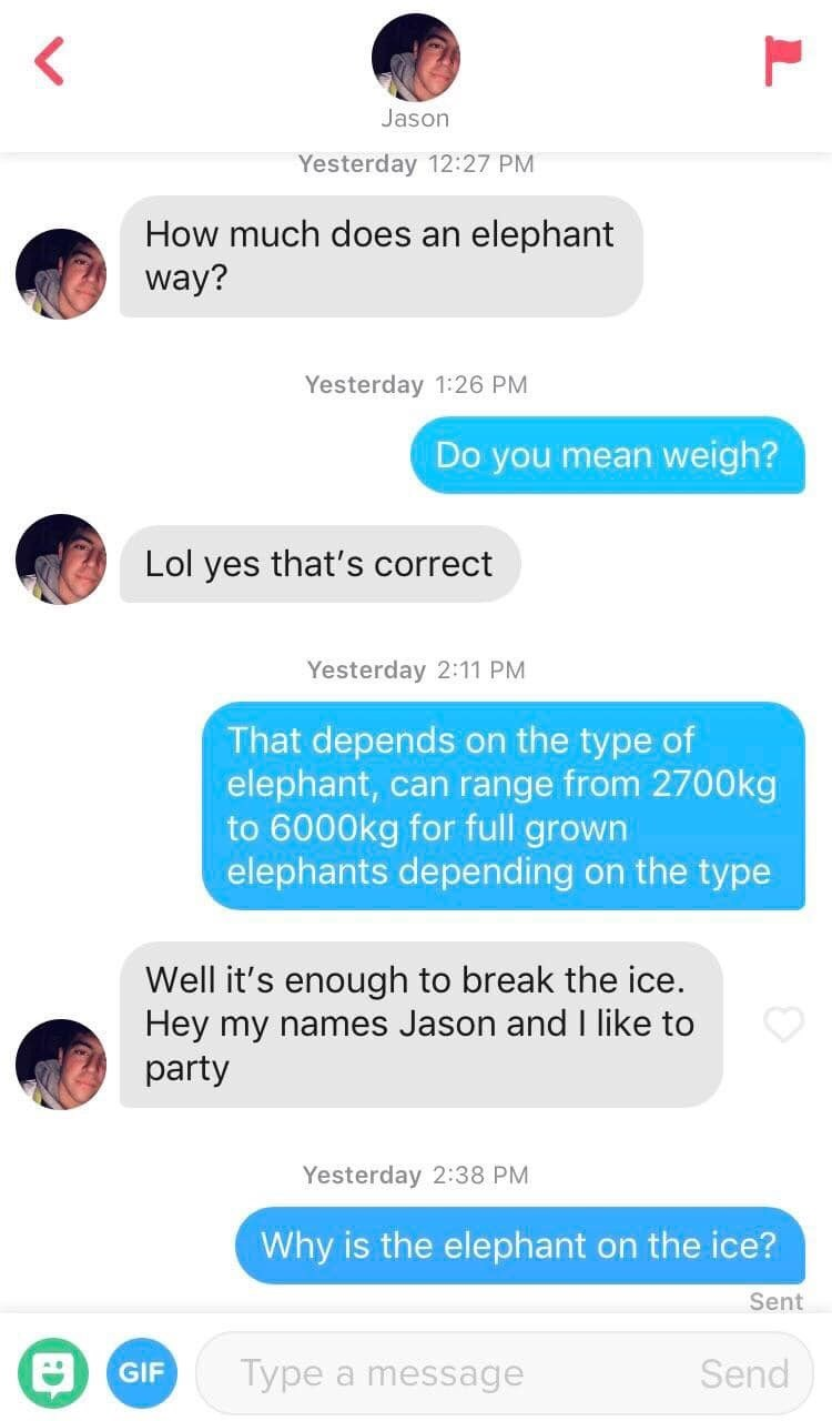 tinder messages How much does an elephant way? Yesterday 1:26 PM Do you mean weigh? Lol yes that's correct Yesterday 2:11 PM That depends on the type of elephant, can range from 2700kg to 6000kg for full grown elephants depending on the type Well it's enough to break the ice. Hey my names Jason and I like to party Yesterday 2:38 PM Why is the elephant on the ice? Sent Send Type a message GIF