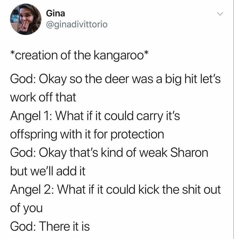 twitter post about god *creation of the kangaroo* God: Okay so the deer was a big hit let's work off that Angel 1: What if it could carry it's offspring with it for protection God: Okay that's kind of weak Sharon but we'll add it Angel 2: What if it could kick the shit out of you God: There it is