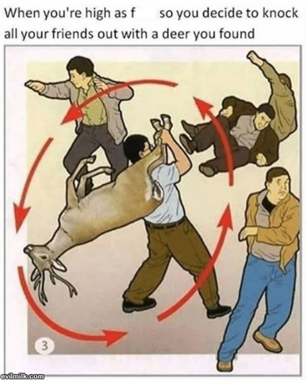 "Caption that reads, ""When you're high as f*ck so you decide to knock all your friends out with a deer you found"" above an illustration of a guy swinging around a deer at his friends"