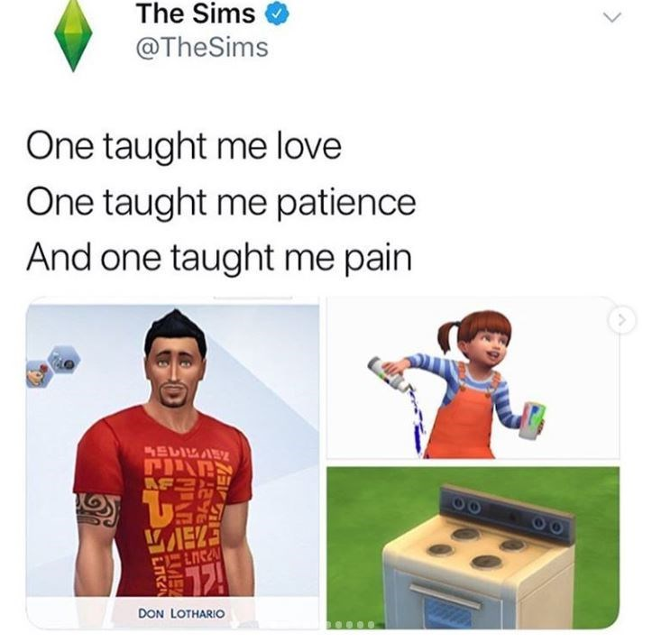 Product - The Sims @TheSims One taught me love One taught me patience And one taught me pain AU DON LOTHARIO