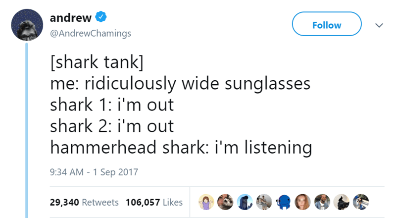 Text - andrew Follow @AndrewChamings [shark tank] me: ridiculously wide sunglasses shark 1: i'm out shark 2: i'm out hammerhead shark: i'm listening 9:34 AM - 1 Sep 2017 29,340 Retweets 106,057 Likes