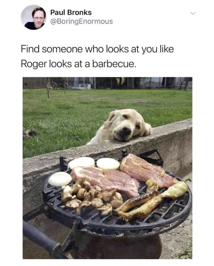 wholesome meme of a golden retriever staring at a bbq