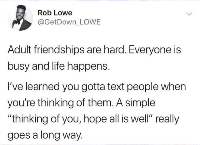 wholesome meme about how adult friendships are hard