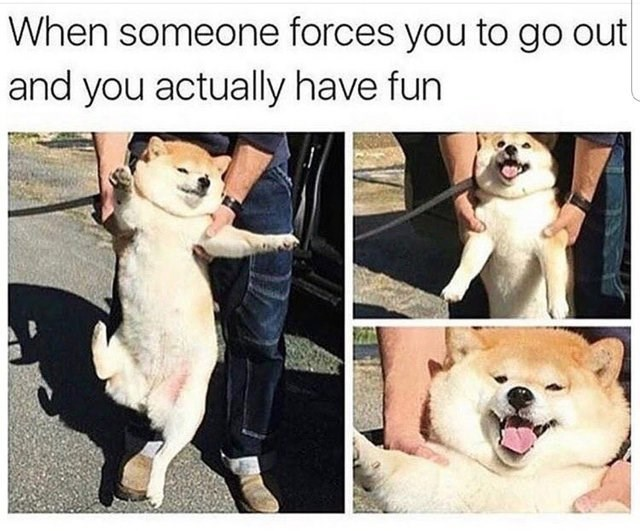 wholesome meme about when someone forces you to go out and you actually have fun