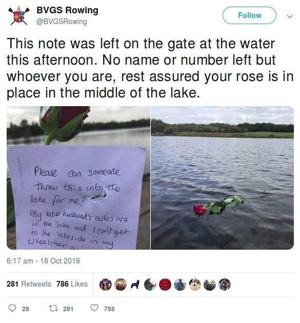 wholesome meme of a person who helped throw a rose into the ocean for someone who couldn't do it